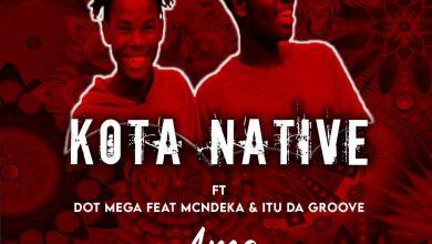 Photo of Kota Native & Dot Mega – Ama 2000