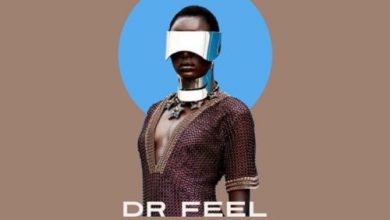 Photo of Dr Feel – Msitu (Original Mix)