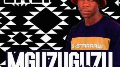 Photo of LAZI – MGUZUGUZU Vol 3 Mix