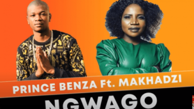 Photo of Prince Benza – Ngwago Ft. Makhadzi