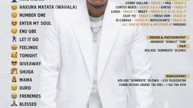 Photo of Dotman – Hakuna Matata (Wahala)