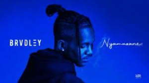 Brvdley – Nyamazane