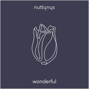 Nutty Nys Wonderful (Original Mix)