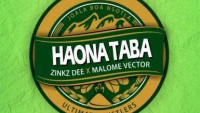 Photo of Zinkz Dee – Haona Taba Ft. Malome Vector
