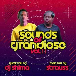 Dj Shima Sounds of Grandiose vol. 11