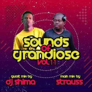 Dj Shima Sounds of Grandiose vol. 11