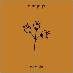 Nutty Nys Nebula