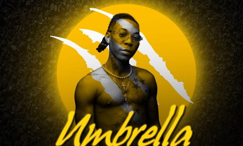 Solidstar Umbrella