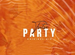 Photo of Tsetse – Party (Original Mix)