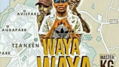 Photo of Master KG – Wayawaya Ft. Team Mosha